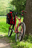 Bike and backpack among the green of nature in spring — Stock Photo