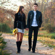 Young happy couple in love walking in park holding hands — ストック写真