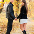 Young beautiful couple in love holding hands of autumn park — Stock Photo