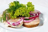 Gezouten haring vis filets in de aardappelen met uien en kruiden — Stockfoto