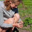 Young Woman with Tomato Seedlings in hands — Stock Photo