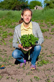 Happy Woman with Tomato Seedlings in the Garden — Stock Photo