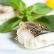 Pike Perch Fillet with Basil closeup — Stockfoto