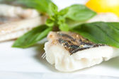 Pike Perch Fillet with Basil closeup — Stock Photo