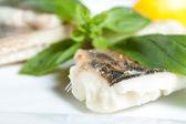 Pike Perch Fillet with Basil closeup — Stock Photo