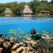 Cabins and corals — Stock Photo