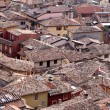 Italian Roofs — Stock Photo #10245222
