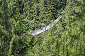 Capilano Suspension Bridge — Stock Photo