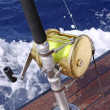 Fishing Reel - Stock Photo