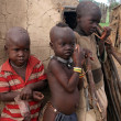 Himba children - Stock Photo