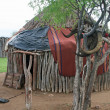Himba Hut - Stock Photo