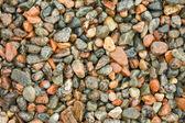 Wet pebbles. — Stock Photo