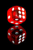 Red dice — Stock fotografie