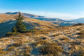 Morning autumn mountain landscape — Stock Photo