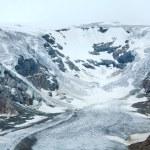 Alpine summer glacier view — Stock Photo