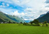 Alps summer village — Stock Photo