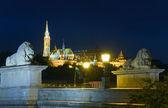 Budapeşte zincir köprü gece görünümü — Stok fotoğraf