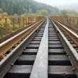 Stock Photo: Railway on bridge across mountain river