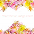 Two flowers heart — Stock Photo