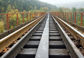 Railway on bridge across mountain river — Stock Photo