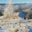 Stock Photo: Winter mountainside (1)