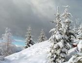 Paisaje de invierno (7) — Foto de Stock