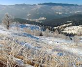Winter landscape (10) — Stock Photo