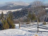 Winter mount landscape — Stock Photo
