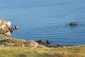 Laguna mar rocoso — Foto de Stock
