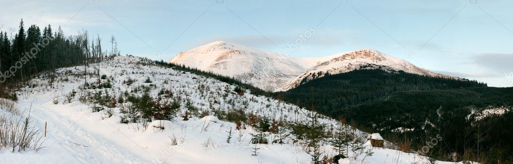 Winter daybreak mountain landscape (Ukraine, Carpathian Mt's, Petros Mountain)  Stock Photo #8002247