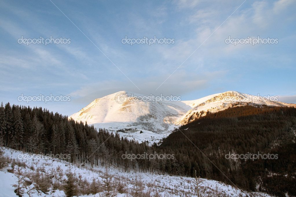 Winter morning mountain landscape (Ukraine, Carpathian Mt's) — Stock Photo #8002276