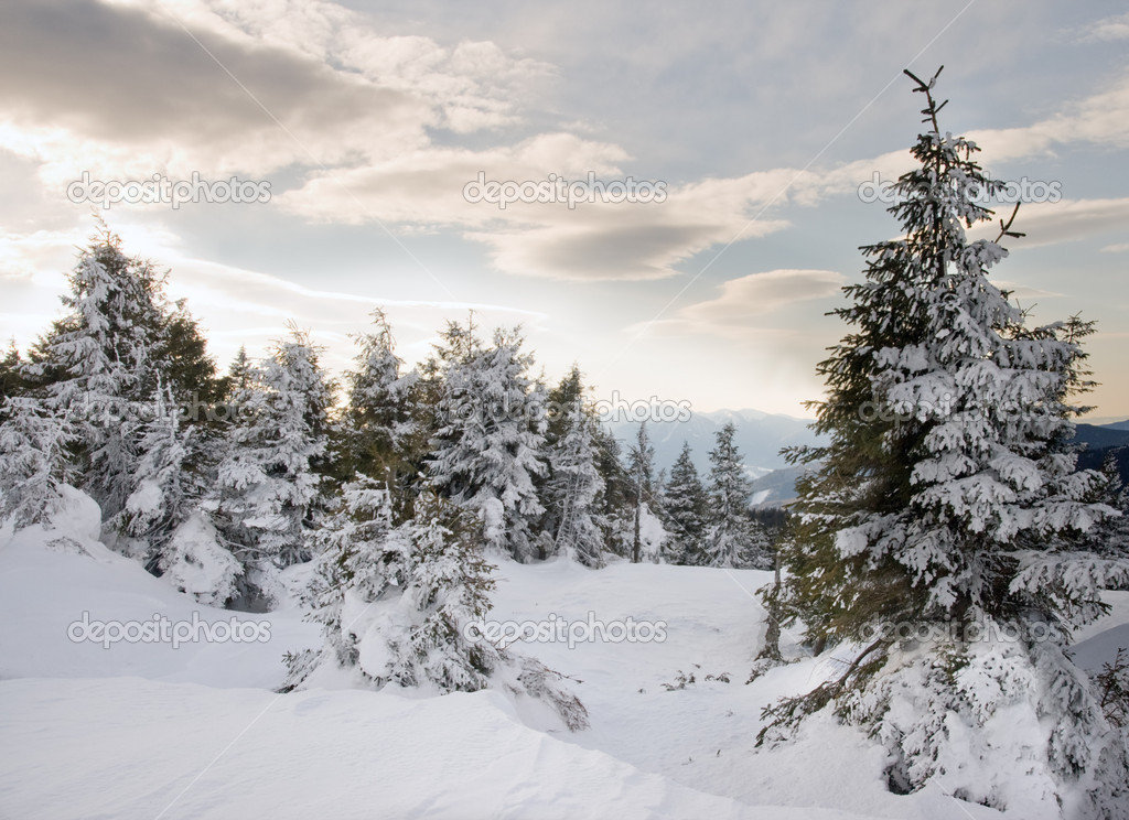 Winter mountain landscape (Ukraine, Carpathian Mt's) — Stock Photo #8002417