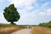 Aile kırsal yolu üzerinde — Stok fotoğraf