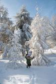 Dívka v zimě parku — Stock fotografie