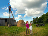 Children on country homestead — Stock Photo