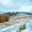 first winter snow and autumn colorful foliage on mountain — Stock Photo #8054771
