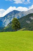 Vue d'été alpes — Photo
