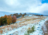First winter snow and autumn colorful foliage on mountain — Стоковое фото