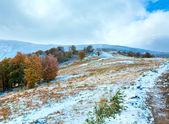Primer invierno nieve otoño colorido follaje y en montaña — Foto de Stock