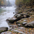 Stock Photo: Mountain river