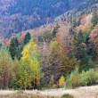 Autumn mountain view with — Stock Photo