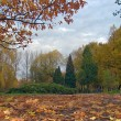 Autumn park — Stock Photo #8098851