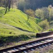 Stock Photo: Railway and spring