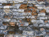 Utter desolation (old wall) — Stock Photo