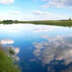 Summer rushy lake panorama — Stock Photo