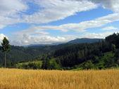 Mountainous landscape 1 — Stock Photo