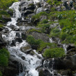 Mountain stream waterfall — Photo #8119304