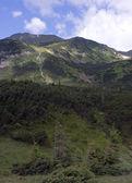 La montaña y la cascada — Foto de Stock