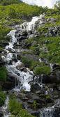 Mountain stream waterval — Stockfoto