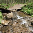 Stock Photo: Mountain stream